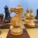 Kasparov' s Chess Evolution - Recordings