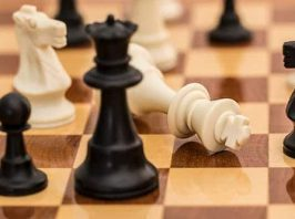 Kasparovs Chess Evolution